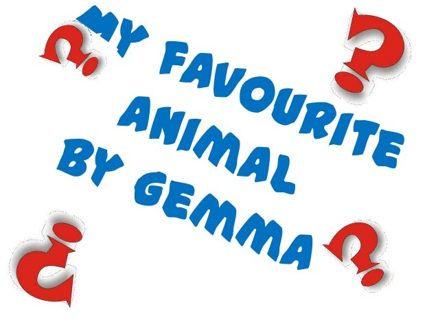 • My favourite animal  has got 4 legs and a  tail