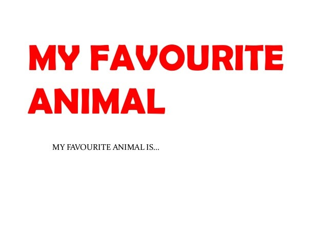MY FAVOURITEANIMAL MY FAVOURITE ANIMAL IS…