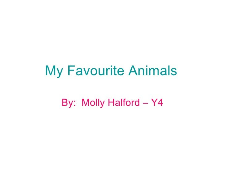 My Favourite Animals By:  Molly Halford – Y4