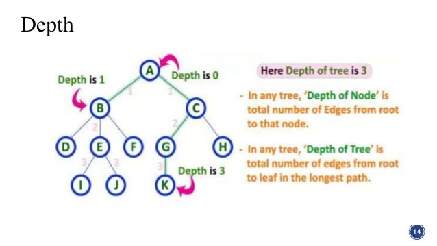 Tree in graph theory in discrete structure depth 14 15 ccuart Images