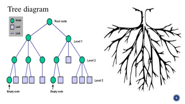 Tree in graph theory in discrete structure tree diagram 6 ccuart Images