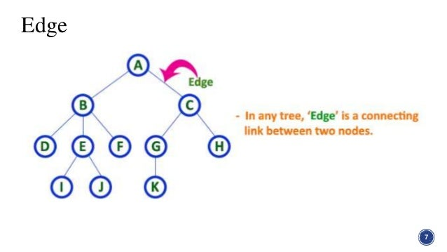 Tree in graph theory in discrete structure edge 7 8 ccuart Images