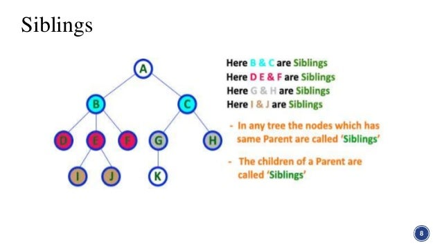 Tree in graph theory in discrete structure siblings 8 9 ccuart Images
