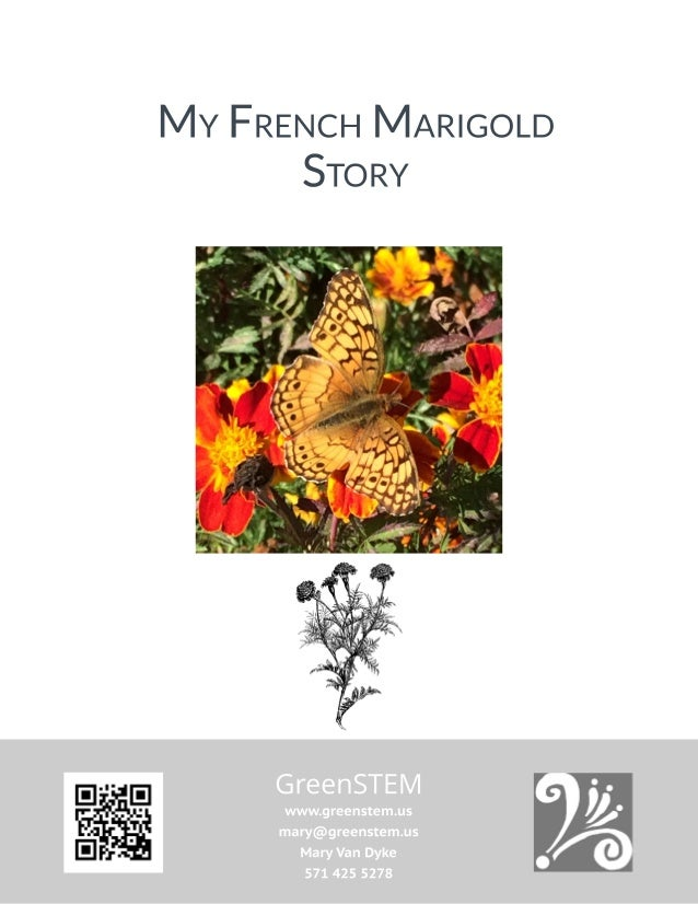 my french marigold story seed saving lesson minibooks coloring sheet garden sign and plant labels 1 638
