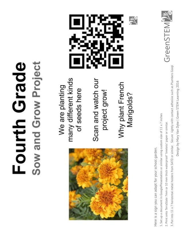 my french marigold story seed saving lesson minibooks coloring sheet garden sign and plant labels 14 638