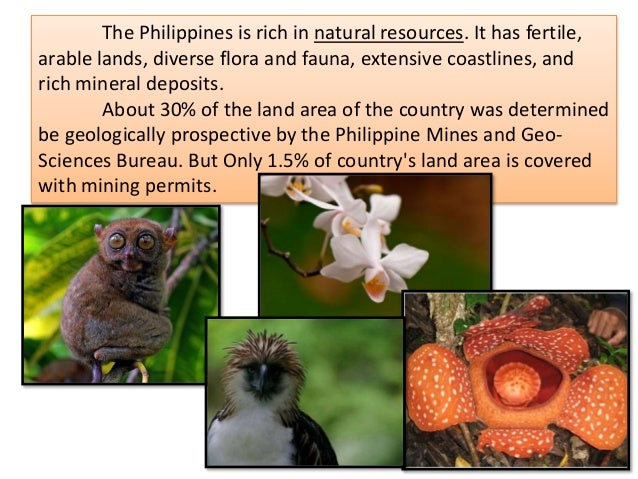 natural resources in the philippines Phillippines mineral resources map showing the locations of minerals in phillippines here you can find the information about the natural resources of phillippines.