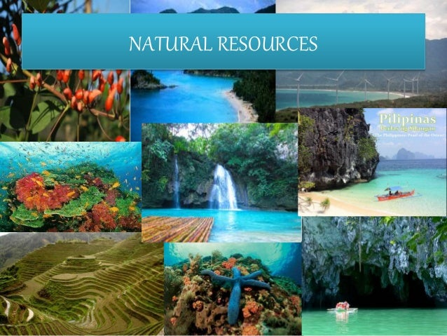The Natural Resources Of Philippines