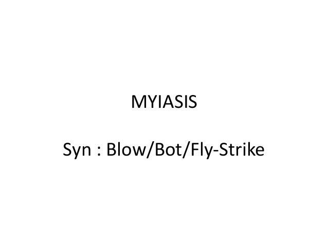 MYIASIS Syn : Blow/Bot/Fly-Strike