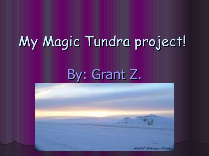 My Magic Tundra project!   By: Grant Z.