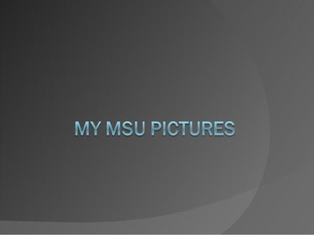 My msu pictures marissa
