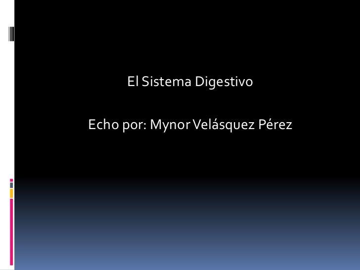 El Sistema DigestivoEcho por: Mynor Velásquez Pérez