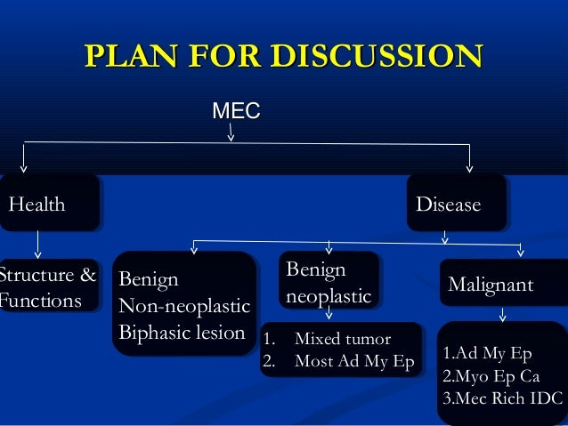 Myoepithelial cells 28th jan Slide 2