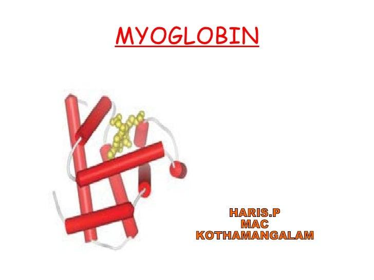 MYOGLOBIN HARIS.P MAC KOTHAMANGALAM