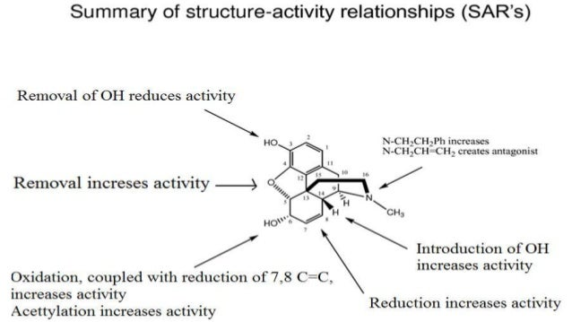 meglitinides structure activity relationship of methadone