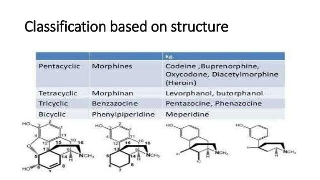 Structure activity relationship of Opiods Slide 3
