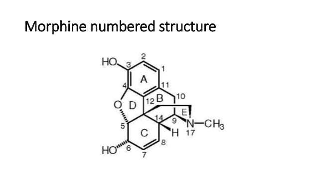 tmc207 structure activity relationship of morphine