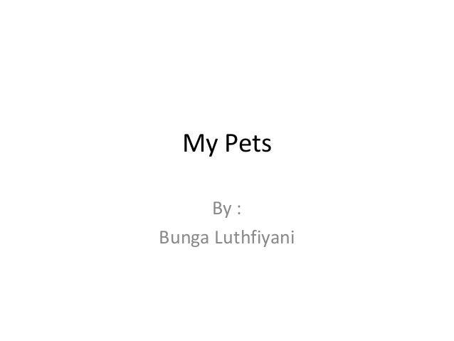 My Pets By : Bunga Luthfiyani