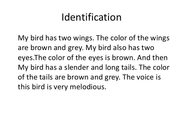 Identification My bird has two wings. The color of the wings are brown and grey. My bird also has two eyes.The color of th...