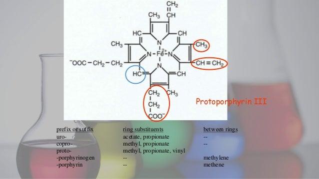 Porphyrin Metabolism