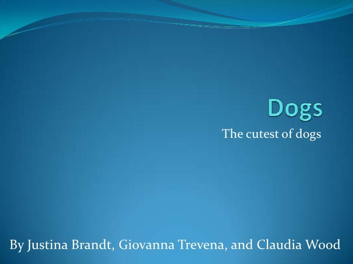 The cutest of dogsBy Justina Brandt, Giovanna Trevena, and Claudia Wood