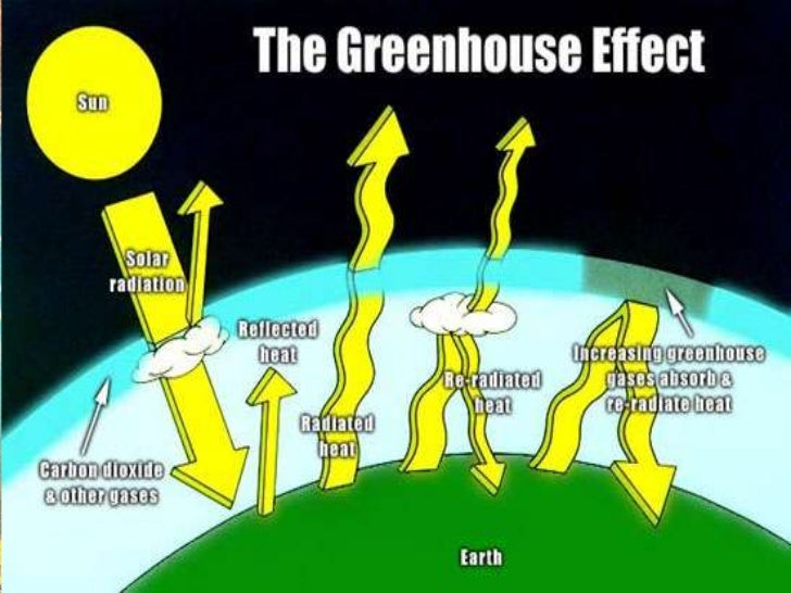 When greenhouse gaseslike carbon dioxide, methane,chlorofluorocarbon(CFC's) etc.trap    the    outgoing   solarradiations ...