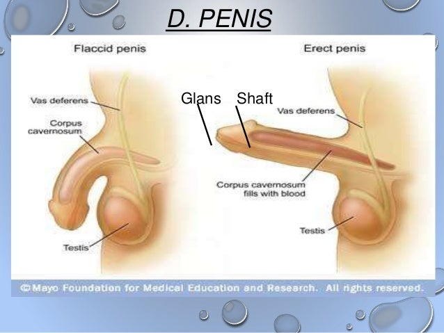 but sperm clear pee Blood in