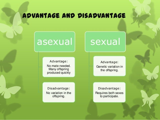 Advantage and disadvantage of sexual and asexual reproduction in plants