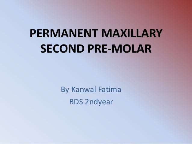PERMANENT MAXILLARY SECOND PRE-MOLAR By Kanwal Fatima BDS 2ndyear