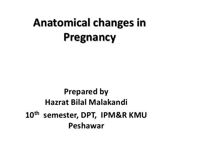 Anatomical changes in Pregnancy  10th  Prepared by Hazrat Bilal Malakandi semester, DPT, IPM&R KMU Peshawar