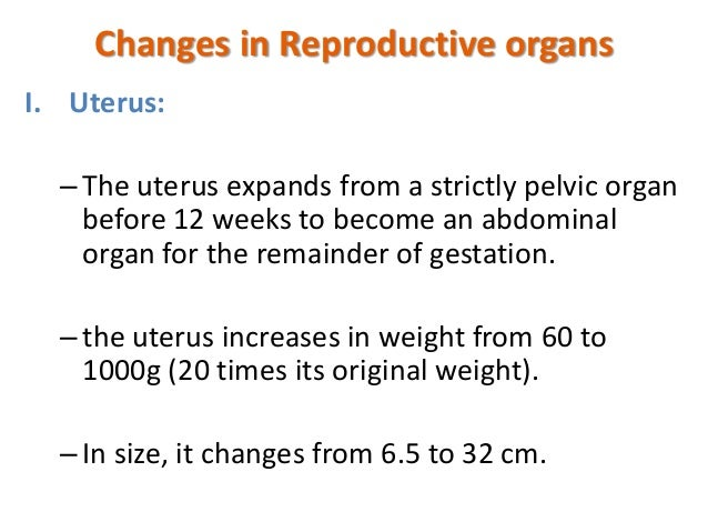 Anatomical changes in Pregnancy