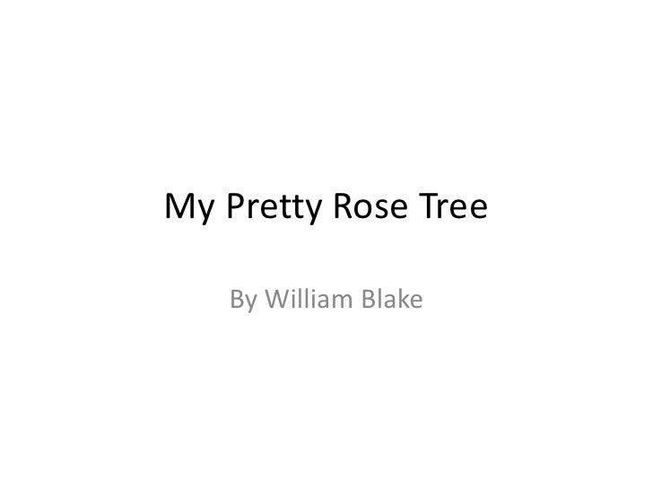 My Pretty Rose Tree<br />By William Blake<br />