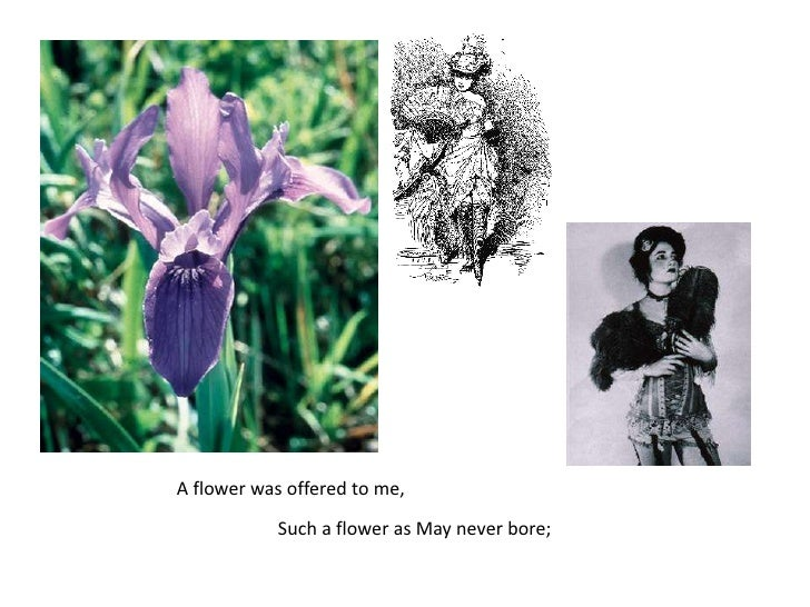 A flower was offered to me,<br />Such a flower as May never bore;<br />