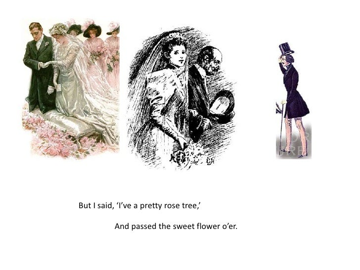 But I said, 'I've a pretty rose tree,'<br />And passed the sweet flower o'er.<br />