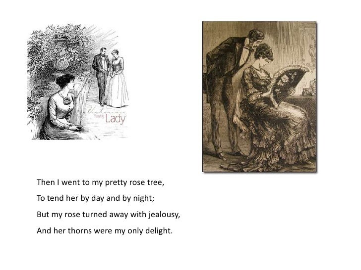 an analysis of my pretty rose tree by william blake Comparing the sick rose, my pretty rose tree, and the lily william blake was born in london on november 28, 1757, to james, a hosier, and catherine blake.