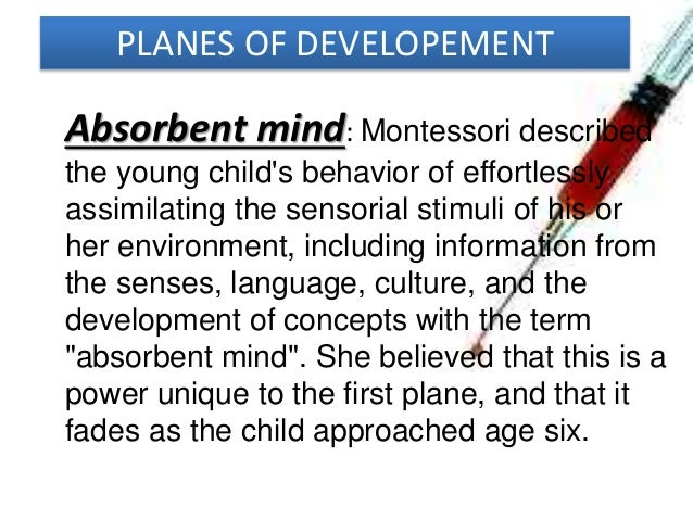 absorbent mind montessori essay