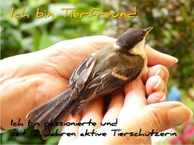 Ich bin passionierte und seit 12 Jahren aktive Tierschützerin Ich bin Tierfreund.