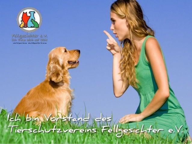 Ich bin Vorstand des Tierschutzvereins Fellgesichter e.V.
