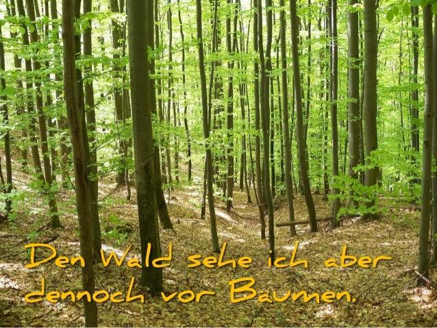 Den Wald sehe ich aber dennoch vor Bäumen.