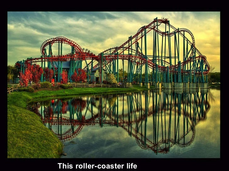 This roller-coaster life