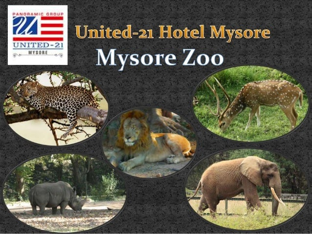 Mysore has many attractions that leisuretourists and nature enthusiasts wouldtruly enjoy visiting. Different types ofwild ...
