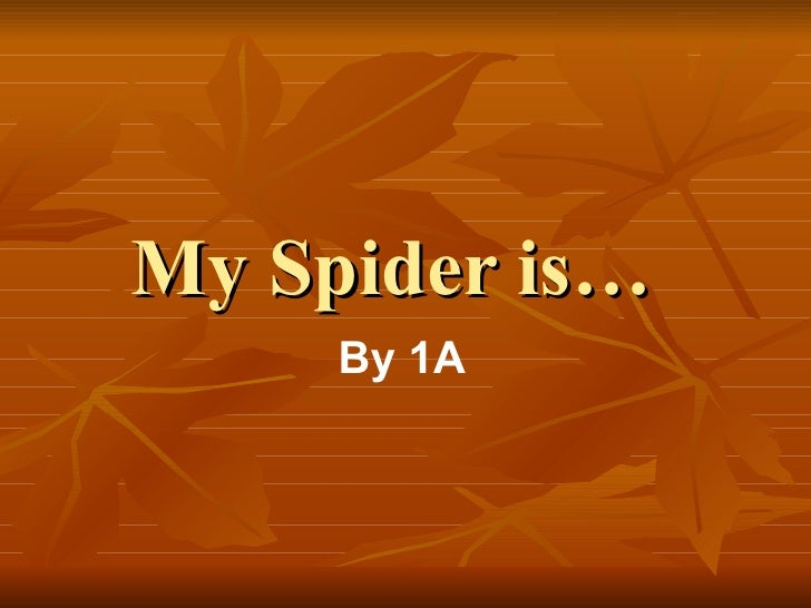 My Spider is… By 1A