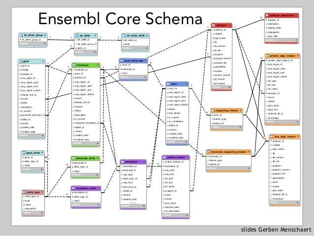 slides Gerben Menschaert Ensembl Core Schema