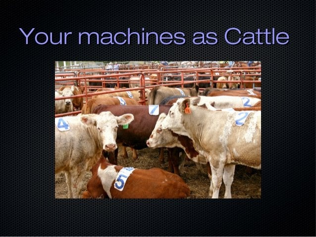 Your machines as CattleYour machines as Cattle