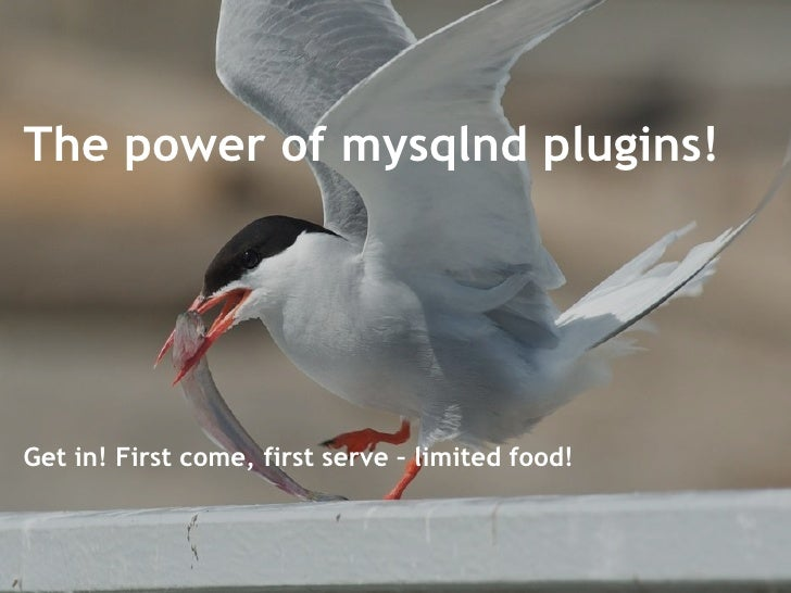 The power of mysqlnd plugins! Get in! First come, first serve – limited food!