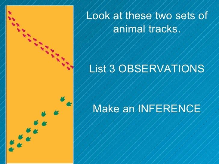 Mystery footprintsobservation inferenceisn – Observation Inference Worksheet