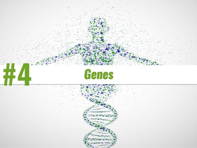 #4 Genes