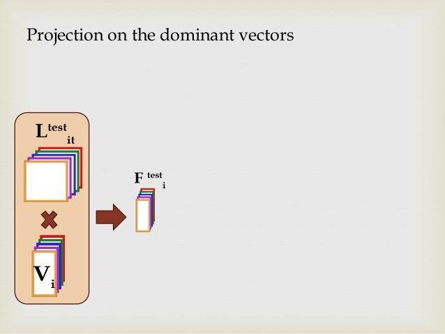 Projection on the dominant vectors
