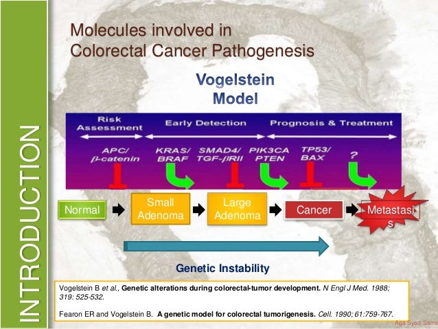 Phd thesis on colorectal cancer