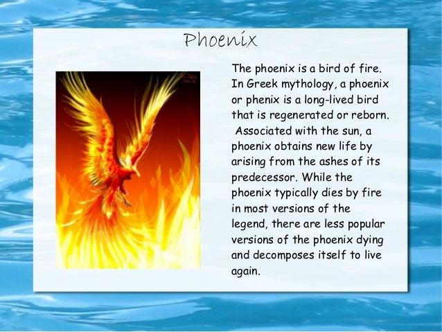 Phoenix Bird Facts For Kids