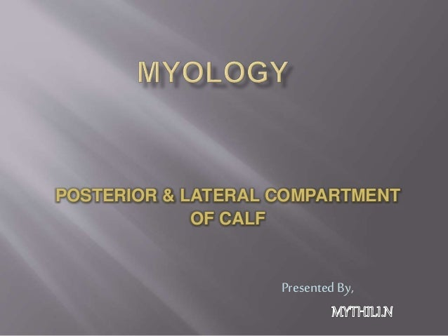 POSTERIOR & LATERAL COMPARTMENT OF CALF Presented By,
